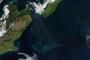new-zealand-plankton-blooms-proof-of-global-warmings-oceanic-effects